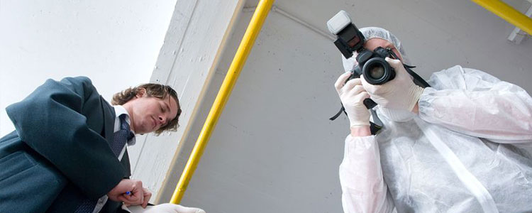 what degree do you need for forensic science
