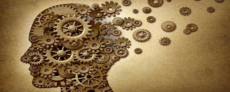 Brain Made of Cogs